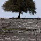 arxaia-dodoni-ancient-08