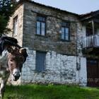 limni-plastira-donkey