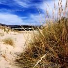 naxos-pirgaki-beach-01