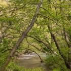 potamos-kireas-khreas-river-19