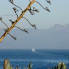 Rafina harbor in Attica