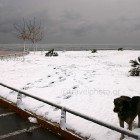 xioni-snow-in-athens-20
