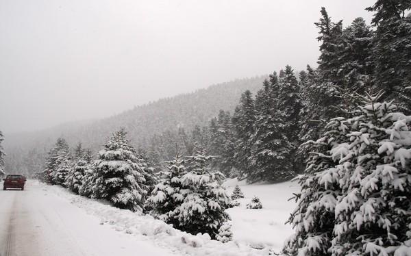 parnassos-mountain