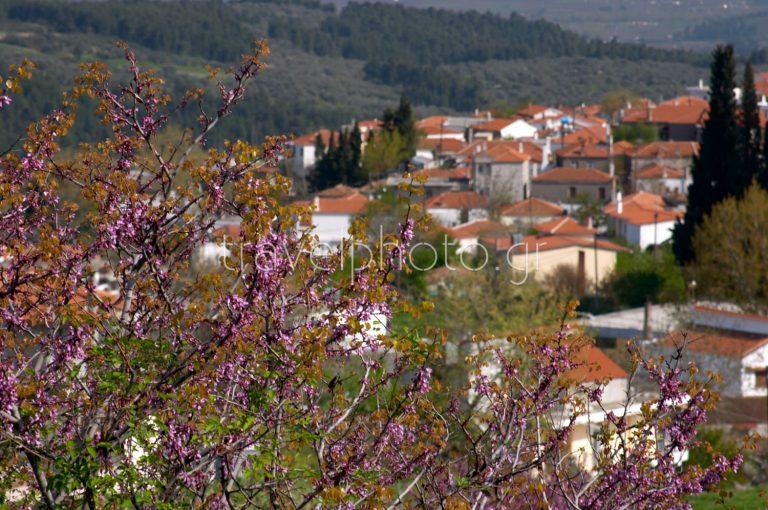 Agia Anna, North Evia