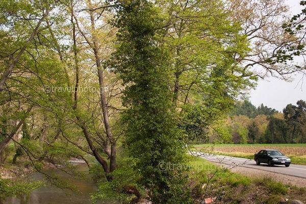 Ποταμός-Κηρέας-Εύβοια-διαδρομή